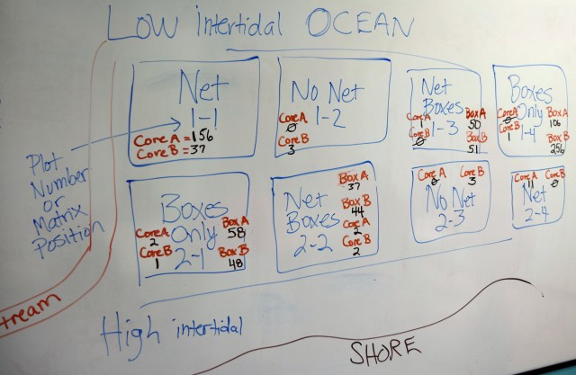 Results recorded on the whiteboard