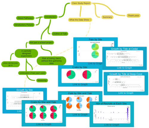 Mind map with graphs